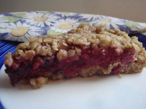 Streusel Berry Bar